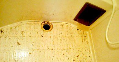 [埼玉県熊谷市]浴室の排水口詰まり抜き作業